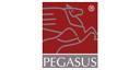 Logo Pegasus GmbH Personalmanagement